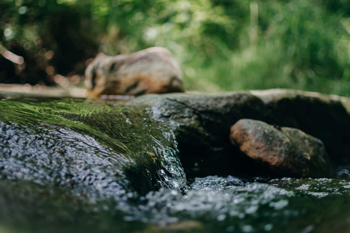Soothing River